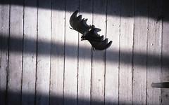 Candace Bonfiglio Photography (candacebonfiglio) Tags: color film kodak massachusetts unitedstatesofamerica colorphotography beverly olympusxa filmphotography colorfilm olympusxa4 kodakporta kodakporta400