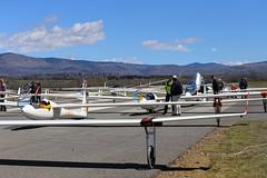 LECD. Sailplane Grand Prix Spain 2016 (Josep Oll) Tags: grid contest fotos nubes das salidas gliders planeadores spotting montaas sgp veleros puigcerd sailplanes capeonato lecd qsgp1804