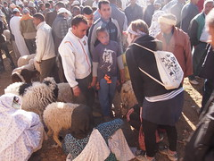 P4162092 (t_y_l) Tags: morocco marokko tinghir suq 2016 tinerhir