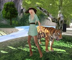 Safari Chic_001_cr (Laura18 Streeter) Tags: class fiore lamour zenith co57 inkheart safarichic larahurley