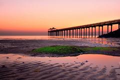 Sunrise (faisy5c) Tags: bridge sunset sea beach water beautiful grass sunrise landscape coast pier seaside nikon seascapes outdoor shore greenery serene kuwait seashore totalphoto d7100 5ccha faisy5c nikond7100