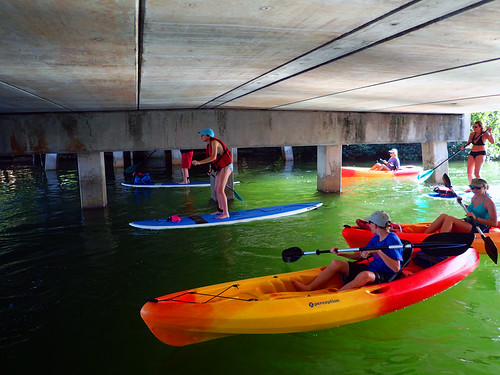 12_29_15  pm paddleboard tour Sarasota FL 02