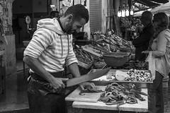 Octopus Job_4 - in Ballar (@ntomarto) Tags: blackandwhite bw italy italia octopus sicily palermo fishmonger sicilia biancoenero polpo ballar openmarket polipo pescivendolo ballarmarket mercatoballar antomarto ntomarto
