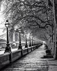 Albert Bridge - Chelsea Embankment (ByronFoto) Tags: bridge blackandwhite cold tree london thames boat vanishingpoint chelsea zoom path walk tone embankment albertbridge disappear leadinglines