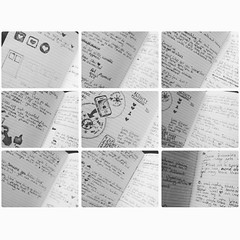 Notes (lizwashere) Tags: notebook sketchbook