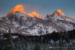 Sunrise Light on Tetons (Free Roaming Photography) Tags: morning winter usa sunlight snow sunrise dawn moose northamerica wyoming tetons grandteton wintersunrise jacksonhole grandtetonnationalpark evergreentrees tetonmountains teewinot mountowen northwesternwyoming taggartlaketrail westernwyoming disappointmentpeak lodgepolepinetrees tetonpeaks sunriseonthetetons