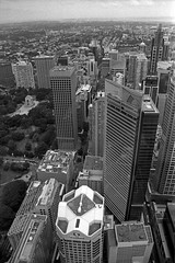 Views from Sydney Tower #01 (Sergiy Lenzion) Tags: blackandwhite bw orange film monochrome analog 35mm canon blackwhite artistic scan negative filter epson a1 analogue 135 expired canona1 perfection forte 35mmphotography selfdeveloped orangefilter bwfilm 4990 caffenol classicblackwhite filmism bwfp