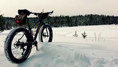 More Fat (Doug Goodenough) Tags: bicycle bike ride cycle pedals spokes fat fatbike snow snowbike trek farley 5 winter idaho waha 2016 january jan drg53116 drg53116p drg531pfarley drg531