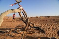 3-Oman-Desert-Marathon-day-3_2178