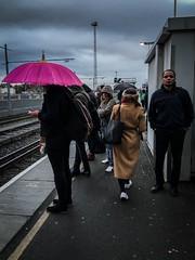 365-306 Brightness on a grey day. (pascal.sirletti) Tags: street london wet rain station 365 clapham iphone