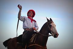 Ricardo Pucheta (Eduardo Amorim) Tags: horses horse southamerica argentina criollo caballo cheval caballos sauce cavalos corrientes pferde cavalli cavallo cavalo gauchos pferd chevaux gaucho amricadosul gacho amriquedusud  gachos  sudamrica suramrica amricadelsur sdamerika crioulo caballoscriollos criollos jineteada  americadelsud gineteada crioulos cavalocrioulo americameridionale caballocriollo eduardoamorim cavaloscrioulos provinciadecorrientes corrientesprovince cavall