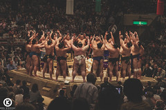 Rikishi in action (Orel Kichigai) Tags: wood travel blue sea wild mountain game tree tourism nature water animals sport yellow rock japan forest children japanese aquarium tokyo wooden san photographer child traditional battle tourist seal koyasan dome koya octopus seals osaka sumo tradition tentacle tentacles kaiyukan okunoin rikishi okuno sumotori kaiyukan4