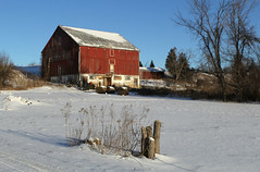 Six and Seven (Doris Burfind) Tags: winter red ontario barn countryside farm georgetown