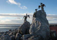 Bird theme sculptures on Stone Jetty at Morecambe (kenemm99) Tags: winter sculpture canon jetty morecambebay 5dmk3