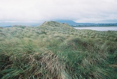 streedagh strand, october 2014 (kodacolorframes) Tags: travel ireland film grass coast europe minoltax700 sligo kodakportra800