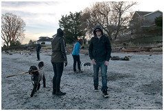 willows-beachdogs (tesseract33) Tags: world light dog art dogs sand nikon victoria willowsbeach d300 tesseract33 peterlangphotographynet
