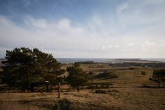 unbenannt-9300.jpg (Kerstin Rttgerodt) Tags: landscape landschaft ostsee hiddensee