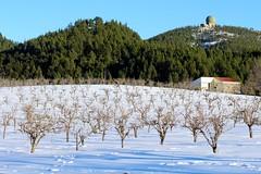 Snow in Gran Canaria (rvr) Tags: snow grancanaria nieve canaryislands