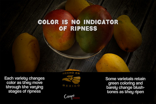 """Color Not An Indicator of Ripeness • <a style=""""font-size:0.8em;"""" href=""""http://www.flickr.com/photos/139081453@N03/25165605233/"""" target=""""_blank"""">View on Flickr</a>"""