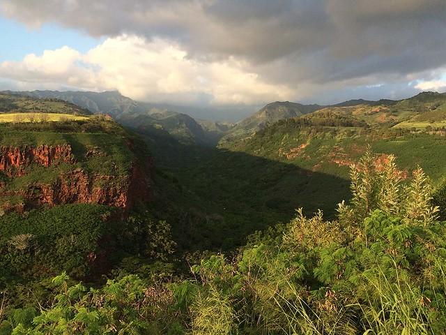 View near Waimea