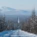 40km de estrada boa pela floresta