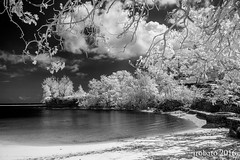 Adelup Beach In B&W Infrared (orgazmo) Tags: monochrome landscapes blackwhite olympus beaches infrared coastlines adelup micro43s m43s epl2 penepl2 mzuiko1250mmf3563