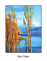 Fiery Trees (imageseekertoo (Wendy Elliott)) Tags: blue orange lake vertical landscape framed kamloops bluetones kamloopslake orangetones kamloopsbritishcolumbia wendyelliott wendyelliottphotographs wendyelliottphotography wendyelliottphotographycopyright2016