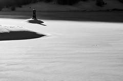 Arriva la luce (Zanna33) Tags: macro lago neve daniela ritratto appennino ghiaccio calamone ventasso