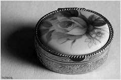 Petite boite  bijoux 2N&B (patrice3879) Tags: bijoux bracelet vieille bote montre