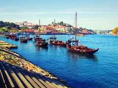 Oporto (dias.carla88) Tags: travel bridge blue brown house portugal rio stairs river boat wine outdoor porto gaia ribeira francesinha