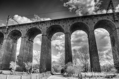 Digswell Viaduct (nigdawphotography) Tags: travel monochrome train cyclist outdoor trains viaduct cycle hertfordshire herts welwyn welwyngardencity digswellviaduct