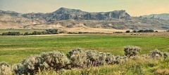 STAGECOACH TRAIL (Irene2727) Tags: sky mountains green nature landscape bush brush wyoming cody scape stagecoachtrail