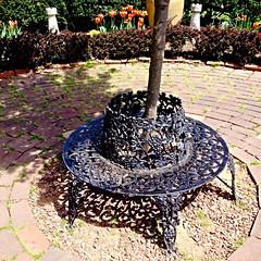 Ladew Gardens ~ garden bench - HBM (karma (Karen)) Tags: flowers gardens shadows tulips bricks maryland benches squared monkton hbm ladewtopiarygardens 4spring benchmonday harfordco