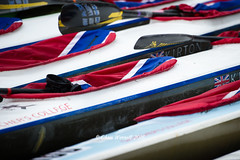 DW-16d2-3108 (Chris Worrall) Tags: boat canoe canoeing chrisworrall competition competitor day2 dw2016 devizestowestminster dramatic drop exciting kayak marathon power river speed splash spray water watersport wave action sport worrall theenglishcraftsman