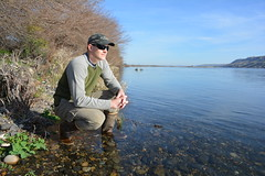 James Stegen on the Shore of the Columbia (Pacific Northwest National Laboratory - PNNL) Tags: river doe departmentofenergy pnnl pacificnorthwestnationallaboratory