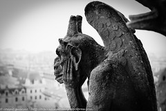 6 (traccediscatti) Tags: grigio arte sguardo notre dame pietra statua chimera architettura gargouille citt medioevo parigi cattedrale scultura