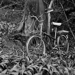 Shopper (DanRSmith) Tags: blackandwhite bw abandoned monochrome bicycle rolleiflex ilfordhp5 discarded 35e xenotar kodakd76