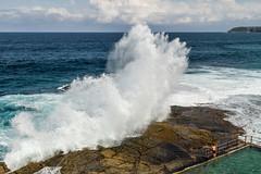 IMG_7558-end.jpg (Taekwondo information) Tags: beach pool waves sydney australia nsw curlcurl importedkeywordtags