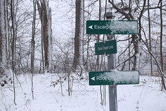 Signs in Rock Chapel area of Hamilton (Joseph Hollick) Tags: white snow sign hamilton snowcovered brucetrail whiteforest