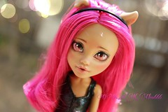 PicsArt_04-09-05.04.35 (Cleo6666) Tags: monster high wolf doll ooak custom mattel repaint howleen monsterhigh