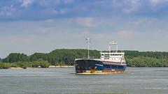 Cargo ship on the Danube river (Paul Istoan) Tags: boat ship delta cargo romania danube tulcea