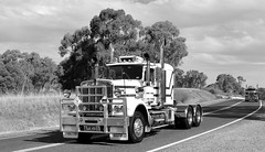 Kenworth W Models (quarterdeck888) Tags: nikon flickr transport frosty semi lorry trucks express kw logistics kenworth bigrig overtheroad haulage quarterdeck vintagetrucks oldtrucks class8 heavyvehicle truckshow cartage roadtransport humehighway heavyhaulage highway31 truckies d7100 highwaytrucks aussietrucks australiantrucks wmodel historictrucks expressfreight australiantransport freightmanagement truckdisplay jerilderietruckphotos jerilderietrucks outbacktrucks crawlingthehume truckexpo quarterdeckphotos oldhighwaytrucks australianinterstatetrucks cralinthehume crawlingthehume2016