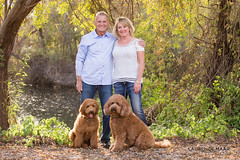 2015-12-13-277-0311-2048LM (Laurence Maar Photography) Tags: pictures life california family light portrait people dog cute love dogs cali portraits canon puppy landscape fun photography puppies pretty couples laugh portfolio lovely canon70200mm canon6d