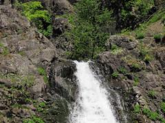 Dog Creek Falls in Washington (Landscapes in The West) Tags: washington hike columbiarivergorge dogcreekfalls waterfallwednesday