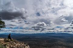 1604 Near the Summit of Bear Mountain (c.miles) Tags: dana sedona bearmountain bearmountaintrail