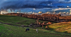 IMG_7892-93Ptzl1scTBbLG2E (ultravivid imaging) Tags: horses clouds rural canon colorful farm scenic vivid fields imaging ultra sunsetclouds stormclouds ultravivid canon5dmk2 ultravividimaging
