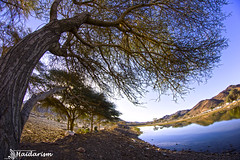 On a Picnic (haidarism (Ahmed Alhaidari)) Tags: blue sky panorama sun mountain lake tree art nature water field picnic quiet artistic sony ngc creative scene calm fisheye creation create a65depth