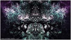 kaleynelsonsym14_1 (kaleynelson) Tags: trees abstract tree nature landscape meditate symmetry mirrored symmetric symmetrical meditation psychedelic spiritual chakra chakras alexgrey sacredgeometry kaleynelson