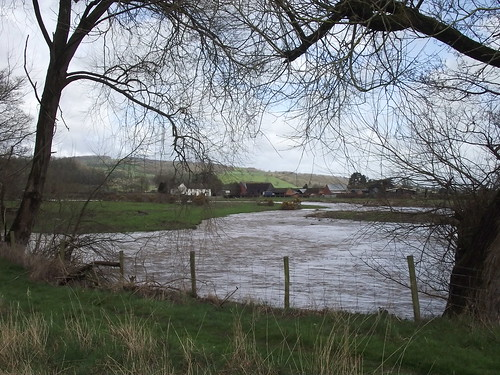 The Rhiw in spate, Glansevern, Powys
