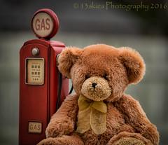 I Was Misunderstood (HTBT) (13skies) Tags: bear brown love hug alone sitting teddy fuzzy gas pump smell teddybear cuddle fuel fill misunderstood fillup htbt teddybeartuesday happyteddybeartuesday